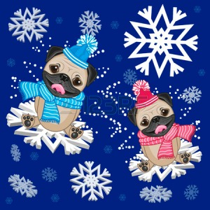 34568794-two-pug-dogs-at-the-snowflakes[1]