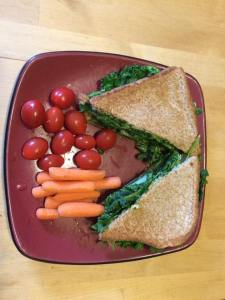 Dayles Vegan Diet